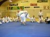 danmark_okt_2008_009