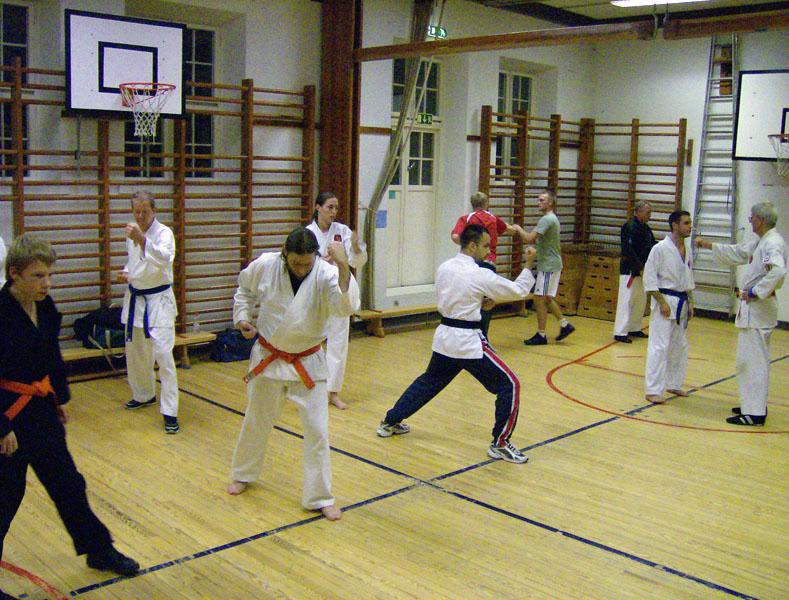 karate_traning_2008_002