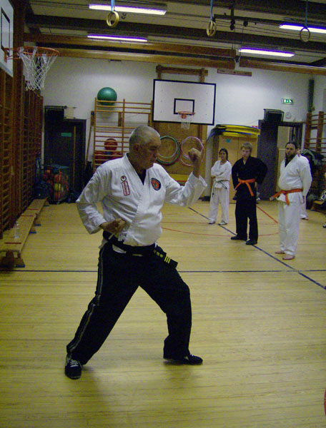 karate_traning_2008_003
