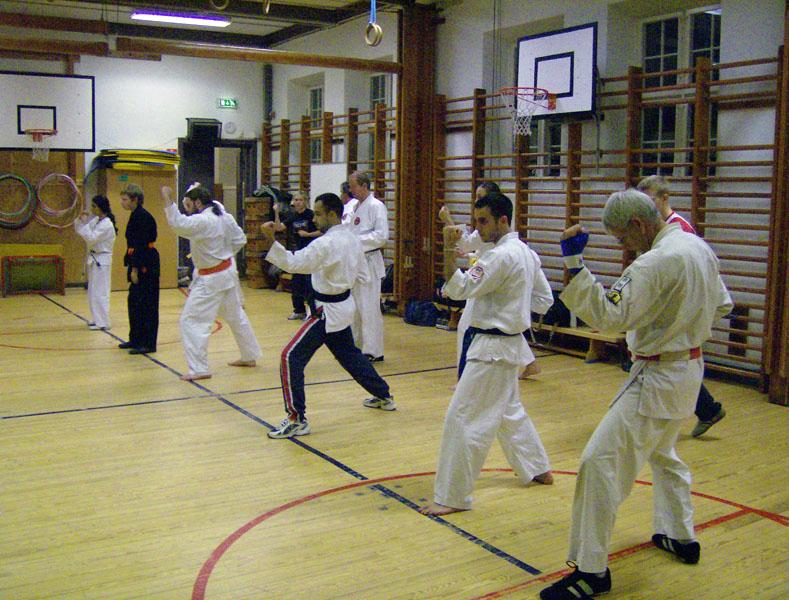 karate_traning_2008_005