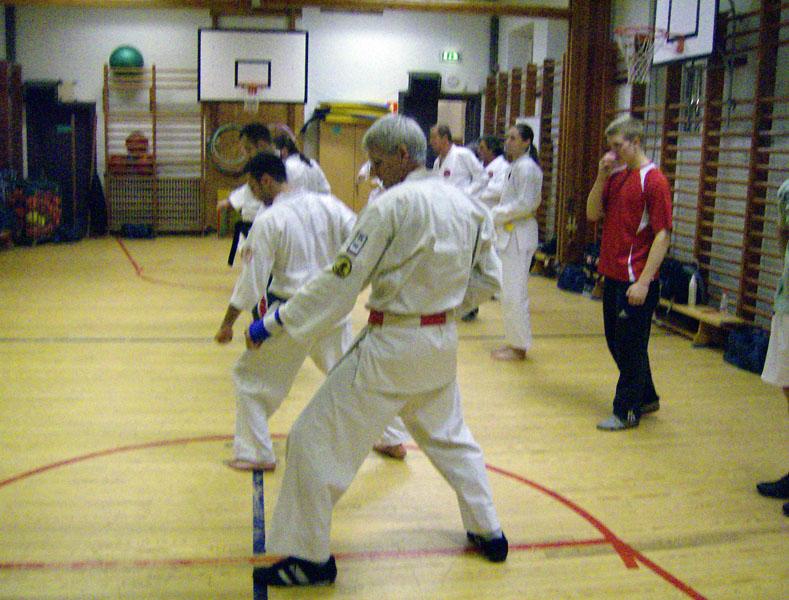 karate_traning_2008_006