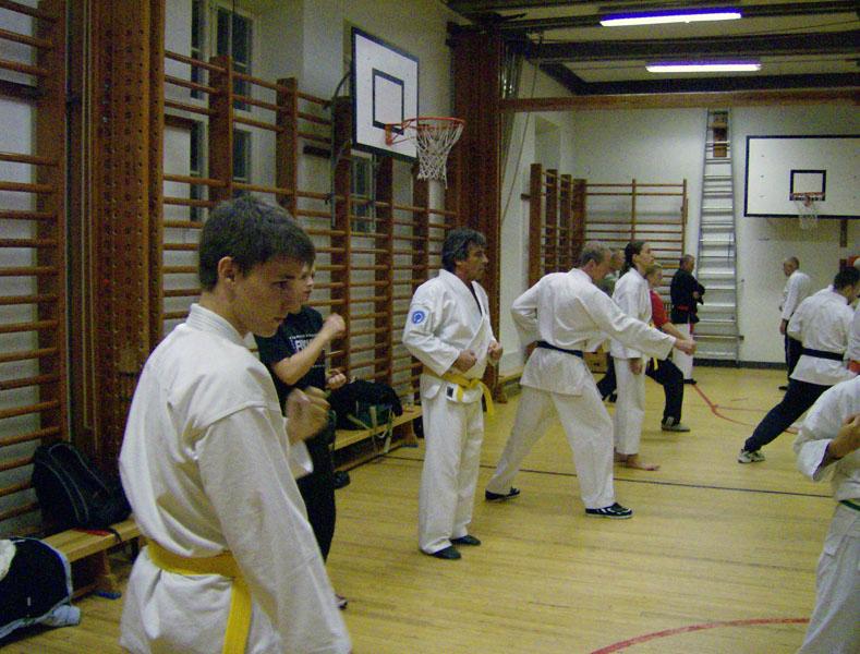 karate_traning_2008_009