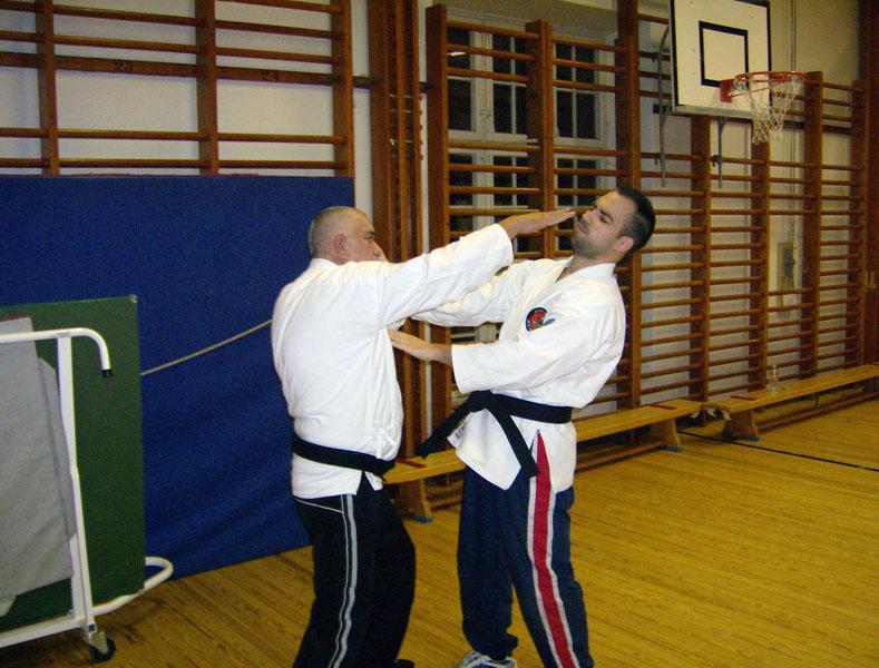 karate_traning_2008_013