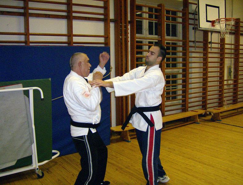 karate_traning_2008_014