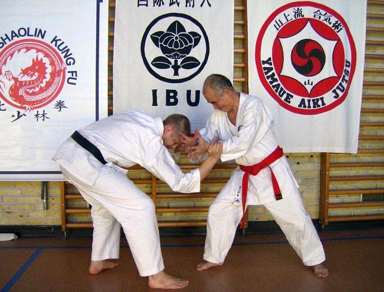 aikijutsu_nov_2007_026